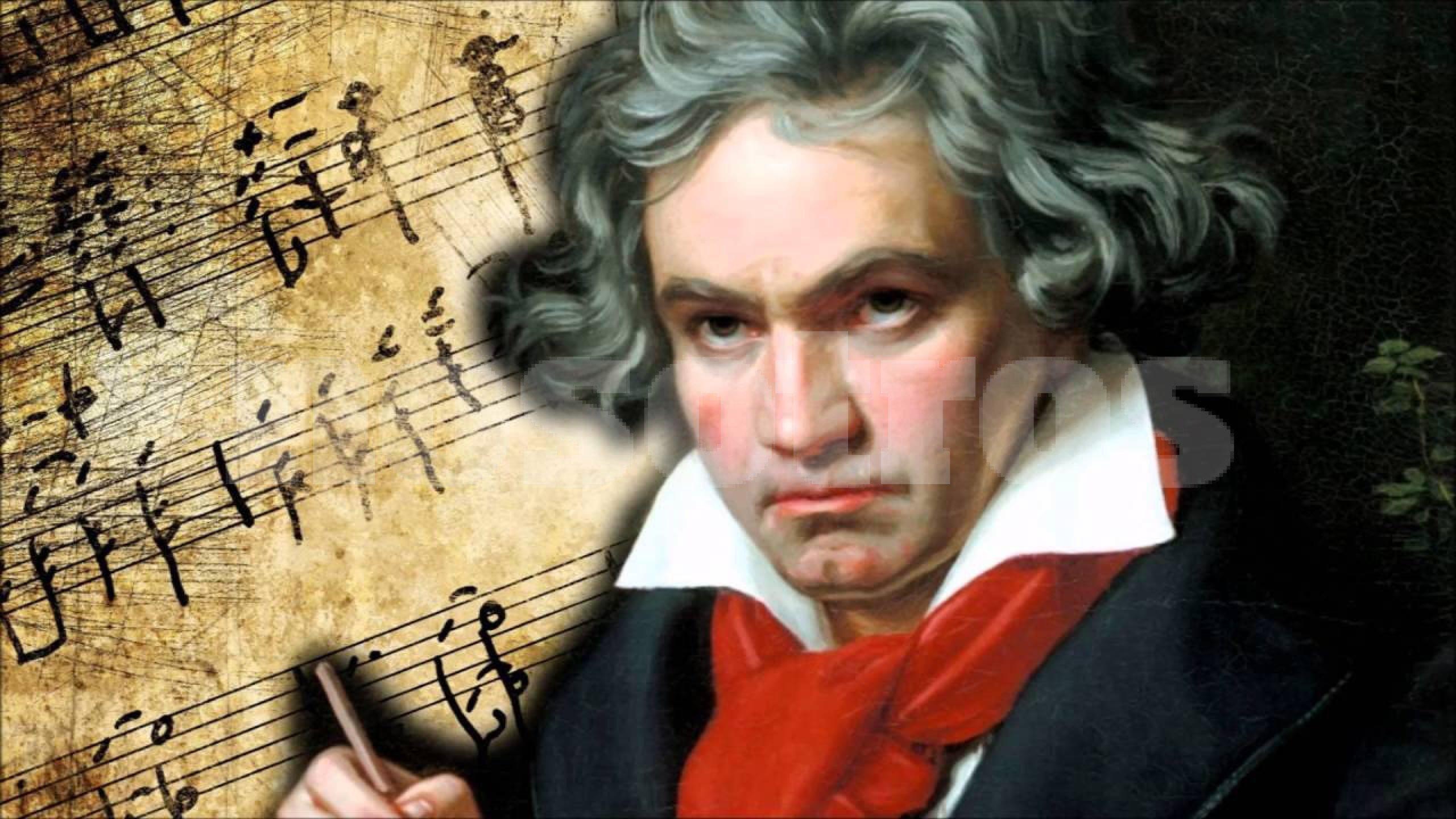 Bundeskunsthalle Beethoven